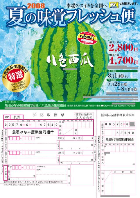 2008Yairosuika