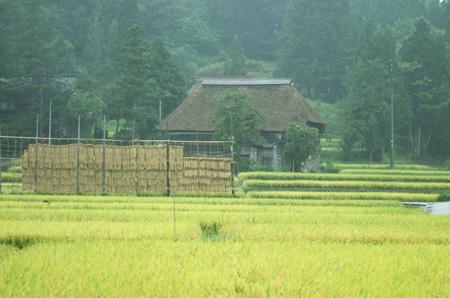 2008_Takayanagi01