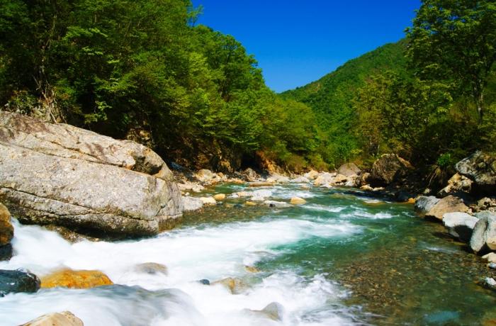 春の水無渓谷