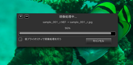 20080227RAW_soft02