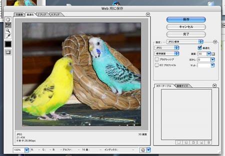20070402-03.jpg