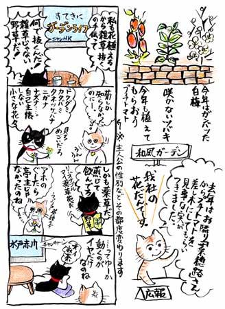4コマ-ぐ〜たら亭主